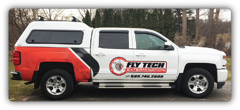 Fly Tech Extermintion