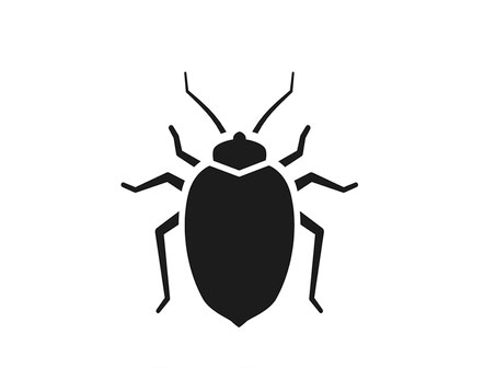 Bed bug exterminators, Rochester NY