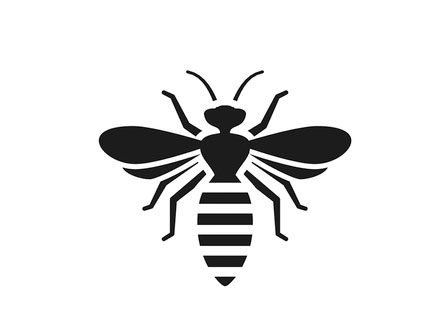 Bee pest control, Rochester, NY