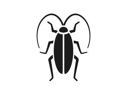 Cockroach extermination, Rochester NY