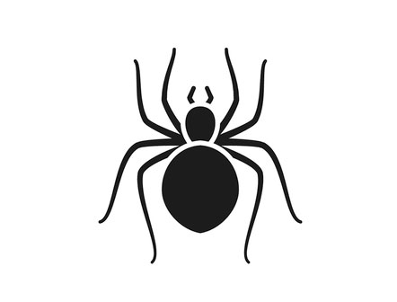 Spider exterminator, Rochester NY
